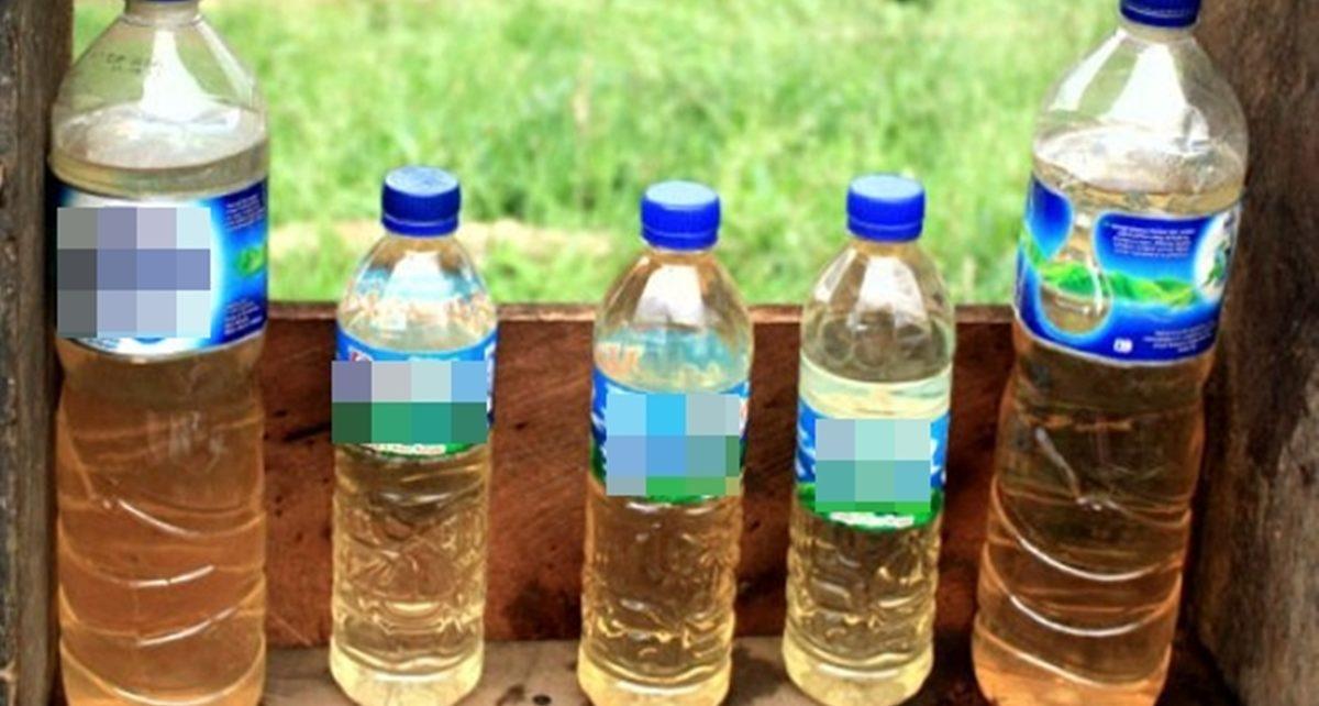 LaPen Minuman Beracun Berbahaya asal Yogyakarta