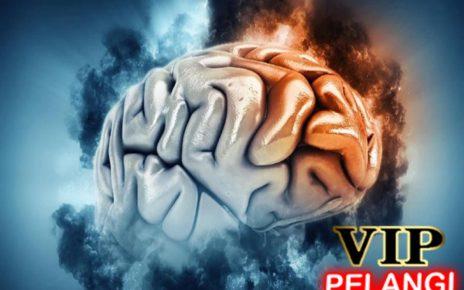 Kebiasaan Ini Bisa Merusak Fungsi Otak